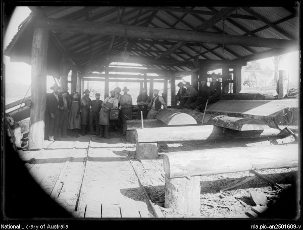 Mr Mitchell's sawmill at Narooma - from the William Corkhill Collection, NLA.