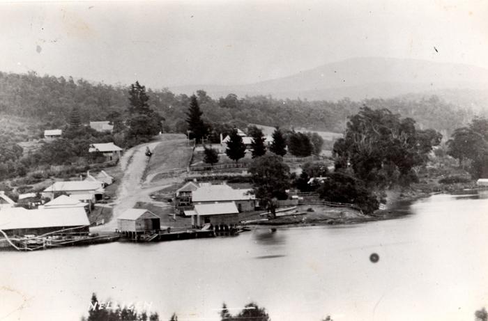 Nelligen_1910