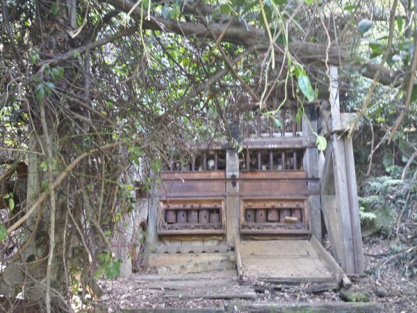 Abandoned battery at Coman's Mine, Nerrigundah