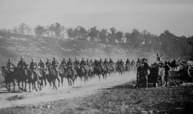 """In the First World War between 136,000 and 169,000 """"Walers"""" (the name generally applied to Australia's sturdy horses) were sent overseas for use by the Australian Imperial Force and the British and Indian governments; 6,100 of those horses embarked for Gallipoli. One horse from them all made it back to Australia. - See more at: http://mhhv.org.au/?p=830#sthash.sz6Wgzvu.dpuf"""